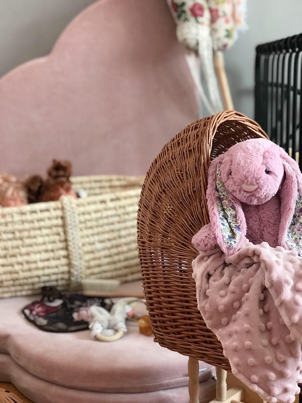 rozi zec u pletenim kolicima