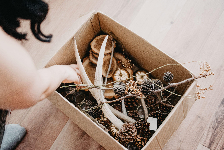 kutija sa šumskim dekoracijama